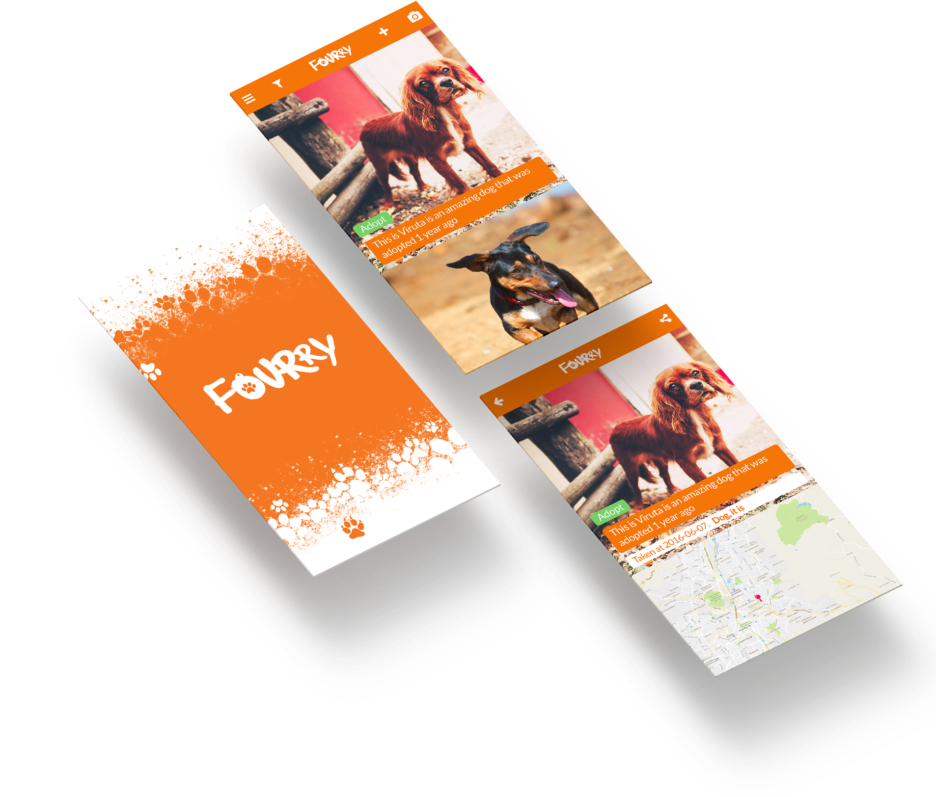 Fourry application - save a pet now!