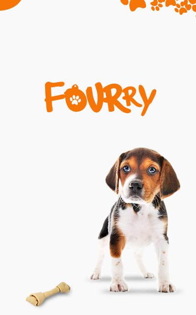 Fourry app - save a pet now!